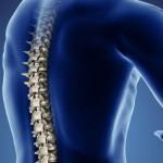 Вредные упражнения для спины