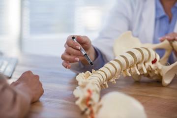 Мифы о болях в спине и лечении позвоночника