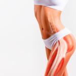 мышцы таза