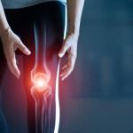 колено спортсмена